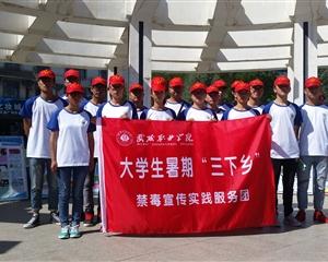 """大学生暑期""""三下乡""""社会实践活动"""